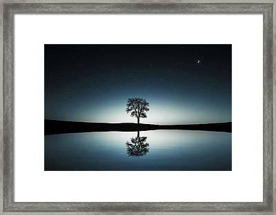 Tree Near Lake At Night Framed Print by Bess Hamiti
