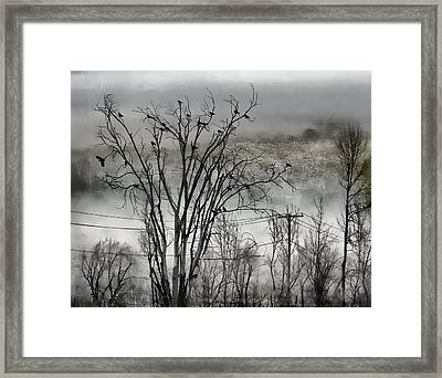 Tree Occupants Framed Print by Gothicolors Donna Snyder