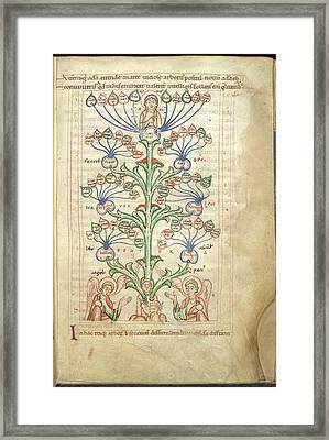 Tree Of Virtues Framed Print by British Library