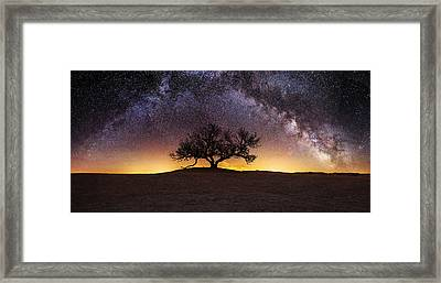 Tree Of Wisdom Framed Print by Aaron J Groen