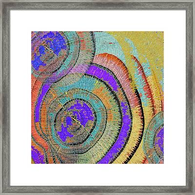 Tree Ring Abstract 3 Framed Print by Tony Rubino