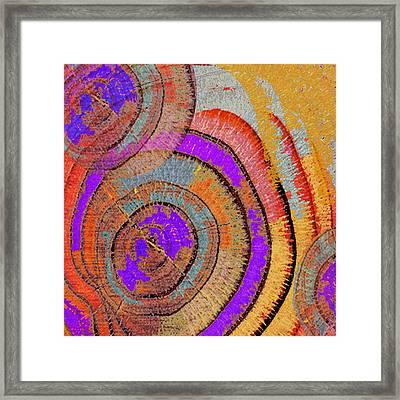 Tree Ring Abstract Framed Print by Tony Rubino