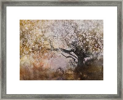 Tree Whispers Framed Print by Amy Weiss