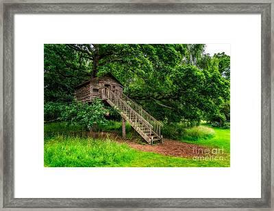 Treehouse Framed Print by Adrian Evans