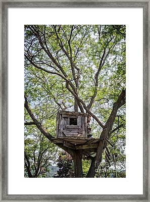 Treehouse Framed Print by Edward Fielding
