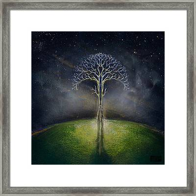 Treelogy II Framed Print by Vincent Carrozza