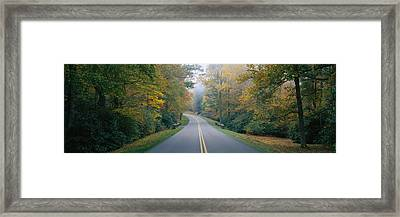 Trees Along A Road, Blue Ridge Parkway Framed Print by Panoramic Images