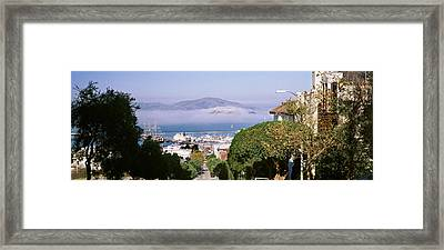 Trees Along The Hyde Street, San Framed Print by Panoramic Images