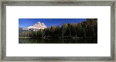 Trees At The Lakeside, Lake Misurina Framed Print by Panoramic Images