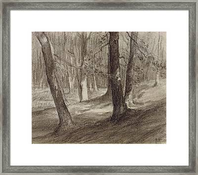 Trees In A Forest Framed Print by Jean-Francois Millet