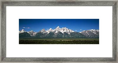 Trees In A Forest With Mountains Framed Print by Panoramic Images