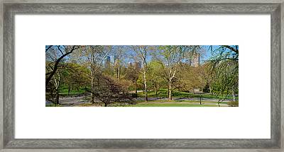 Trees In A Park, Central Park West Framed Print by Panoramic Images