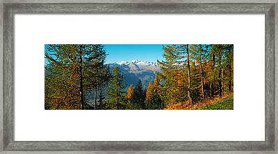 Trees In Autumn At Simplon Pass, Valais Framed Print by Panoramic Images