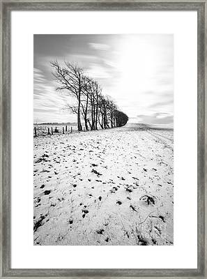 Trees In Snow Scotland II Framed Print by John Farnan