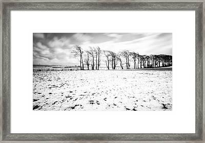 Trees In Snow Scotland Iv Framed Print by John Farnan