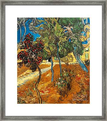 Trees In The Asylum Gardens Framed Print by Vincent Van Gogh