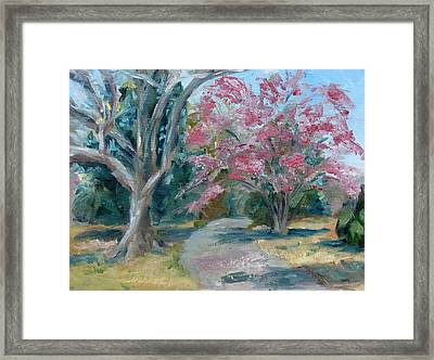 Trees Of Windermere Framed Print by Susan E Jones