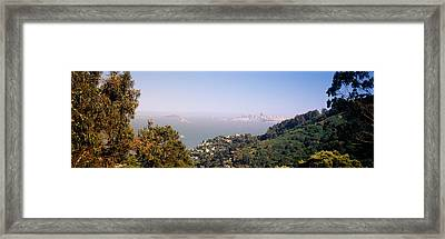 Trees On A Hill, Sausalito, San Framed Print by Panoramic Images