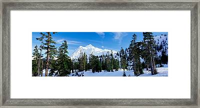 Trees On A Snow Covered Mountain, Mt Framed Print by Panoramic Images
