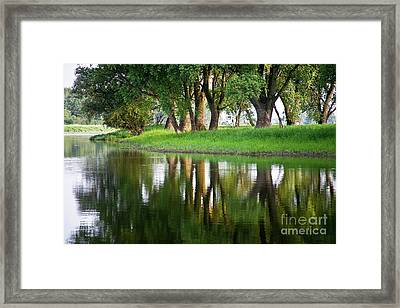 Trees Reflection On The Lake Framed Print by Heiko Koehrer-Wagner