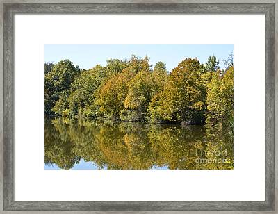 Trees Starting To Have Color  Framed Print by Ruth  Housley