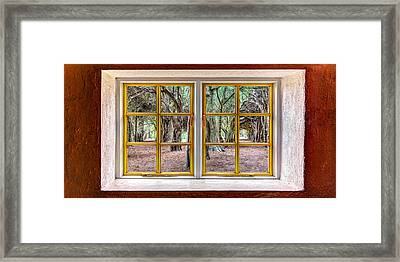 Trees Through A Window Framed Print by Semmick Photo