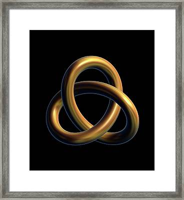 Trefoil Or Escher Knot Framed Print by David Parker
