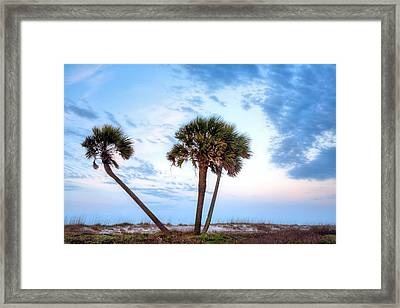 Tres Amigos In Gulf Shores Framed Print by JC Findley