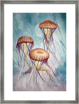 Tres Jellyfish Framed Print by Jeff Lucas