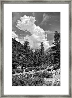 tribute to Ansel Adams Framed Print by Peggy Hughes