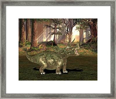 Triceratops Dinosaur Framed Print by Friedrich Saurer