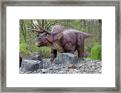 Triceratops Model I Framed Print by Dirk Wiersma