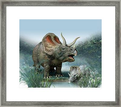Triceratops Old And Young Framed Print by Mikkel Juul Jensen