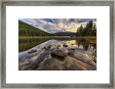 Trillium Reflection Framed Print by Mark Kiver