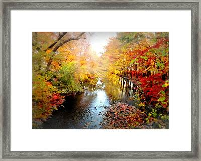 Trip Through My Mind Framed Print by Diana Angstadt