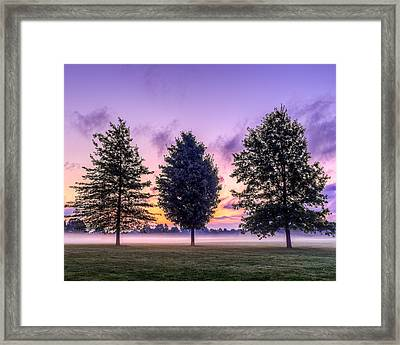 Triplets In Morning Fog Framed Print by Chris Bordeleau