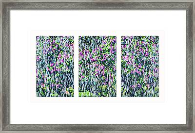 Triptych Impressions Of Spring Framed Print by Alexander Senin