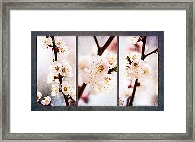 Triptych Light Of Spring 1 Framed Print by Alexander Senin