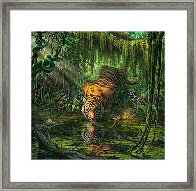 Aurora's Garden Framed Print by Mark Fredrickson