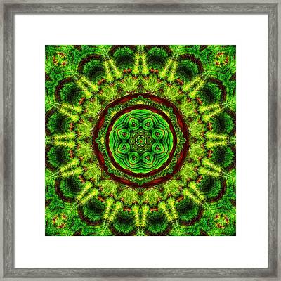 Tropic Leaf Pattern Mandala Framed Print by Deborah Smith
