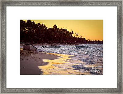 Tropical Beach At Sunset Framed Print by Elena Elisseeva