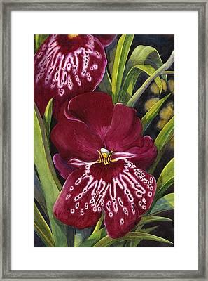 Tropical Beauty 1 Framed Print by Karen Wright