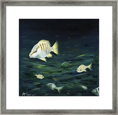 Tropical Fish Framed Print by Anastasiya Malakhova