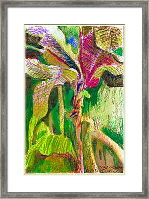 Tropical Light Framed Print by Mindy Newman