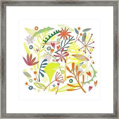 Tropical Framed Print by Nic Squirrell