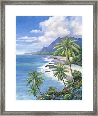 Tropical Paradise 2 Framed Print by John Zaccheo