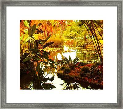 Tropical Paradise Framed Print by Amy Vangsgard