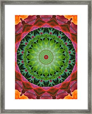Tropical Plant Kaleidoscope Framed Print by MTBobbins Photography