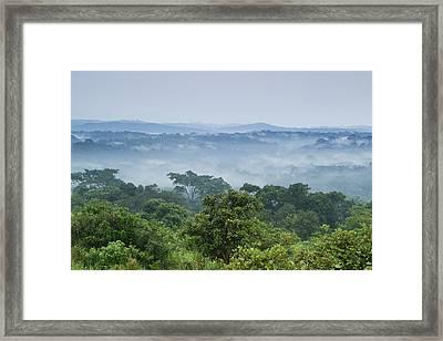 Tropical Rainforest Kibale Np Western Framed Print by Sebastian Kennerknecht