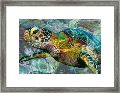 Tropical Sea Turtle Framed Print by Jack Zulli